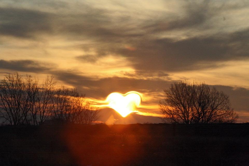 zwiazkimilosci.pl: serce ze słońca na tle bezlistnych drzew, zachmurzone niebo