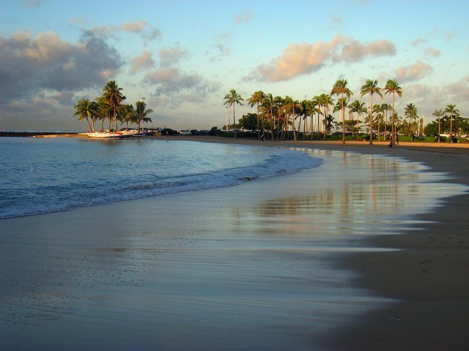 zwiazkimilosci.pl: plaża na hawajach palmy i woda